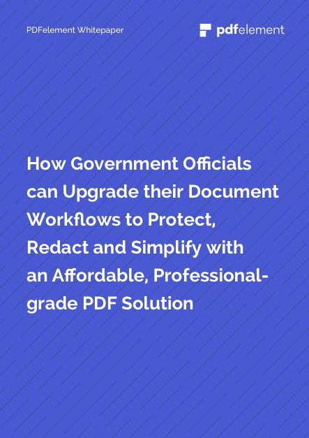 White Paper Thumbnail for Government