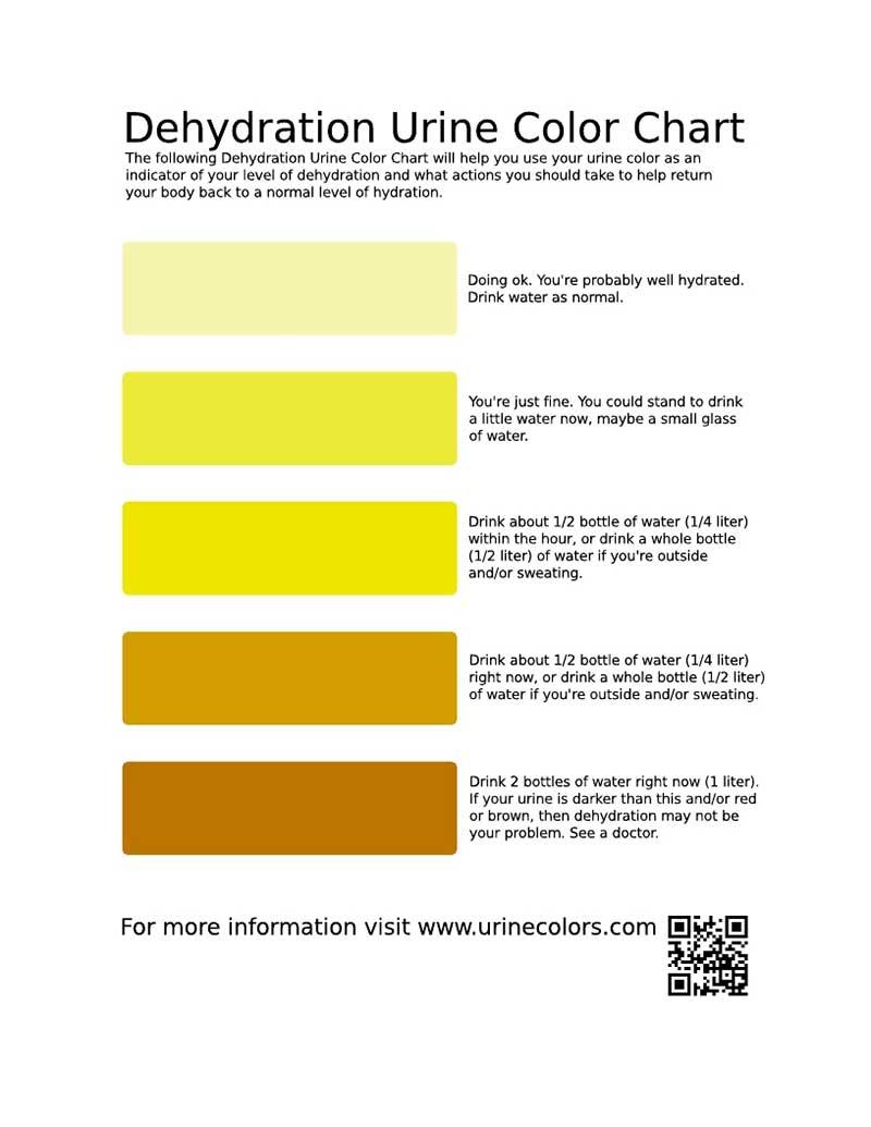 Poop Color Chart 80890 Loadtve