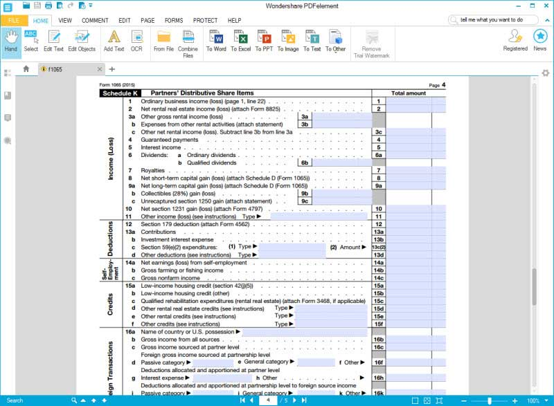 fill form 1065 schedule k