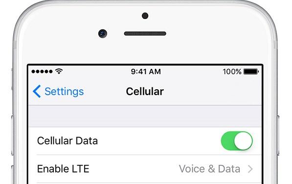 cellular data