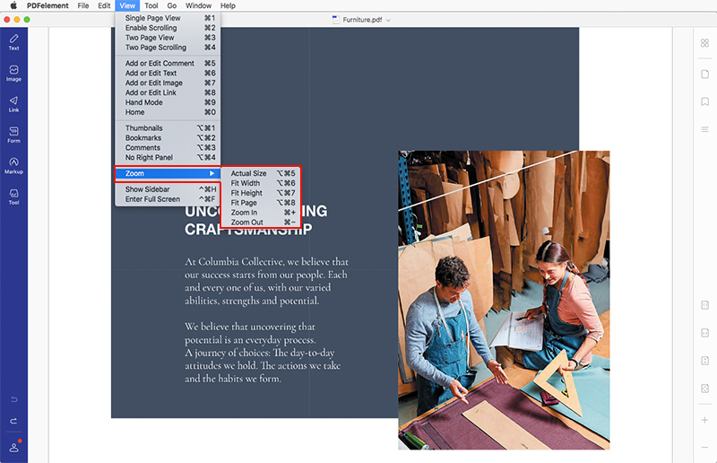 pdf - zoom