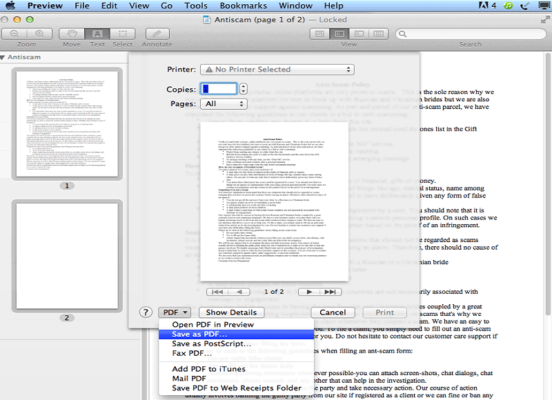 create pdf with preview
