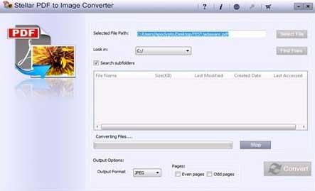 convertisseur de pdf en png