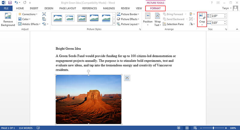 how to crop a picture in word