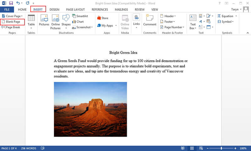 how to insert a page in word
