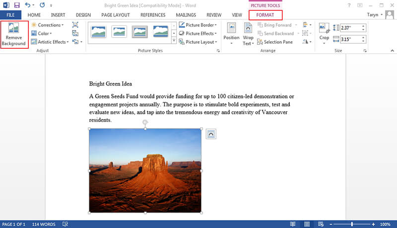 how to edit picture in word document